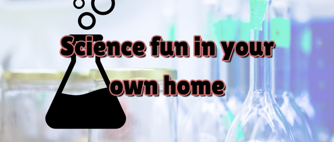 Science fun in your own home