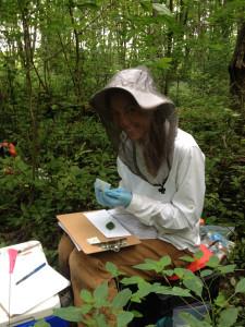 RT-fieldwork-collectingDNA